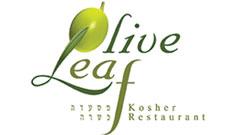 אוליב ליף - Olive Leaf