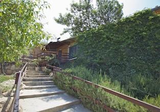 תמונה של חוות התבלינים בגלבוע - 3