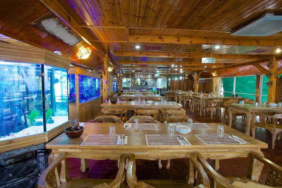 תמונה של מסעדת פלפלה - 2