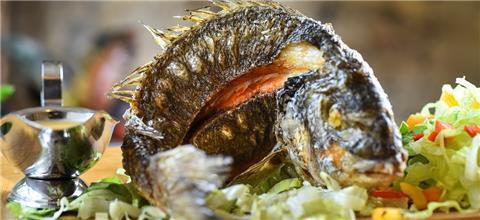 אלדיאר - מסעדה ים תיכונית בהמושבה הגרמנית, חיפה, חיפה