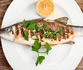 אוצרות מהים: מסעדות דגים מעולות באזור המרכז