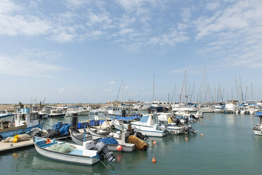 תמונה של הדייגים - 3