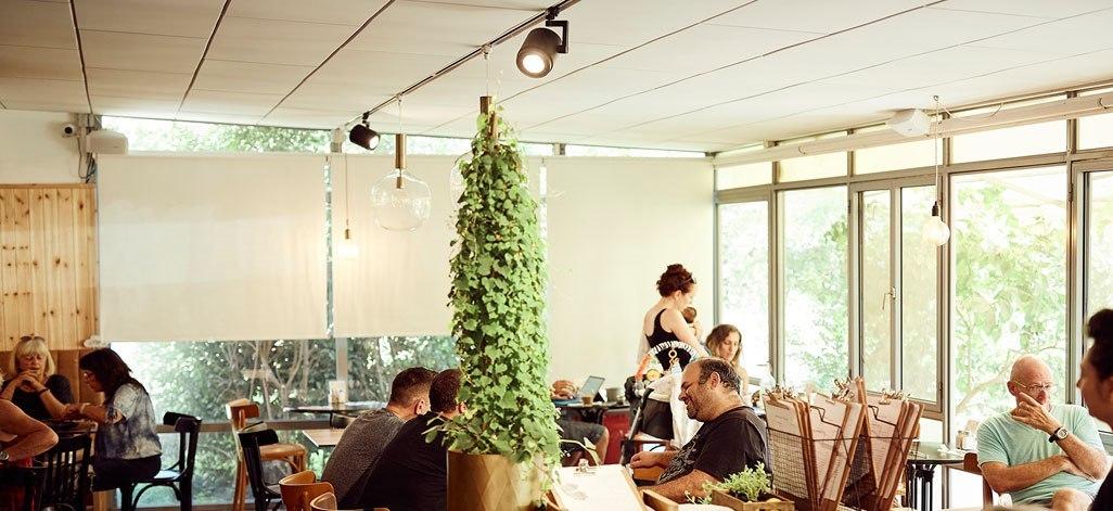 תמונת רקע ביסטרו גרציא קפה ותוצרת