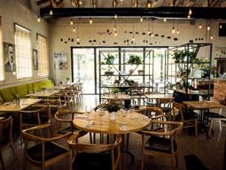 עם הפנים לבלקן: ביקור במסעדת קופינאס