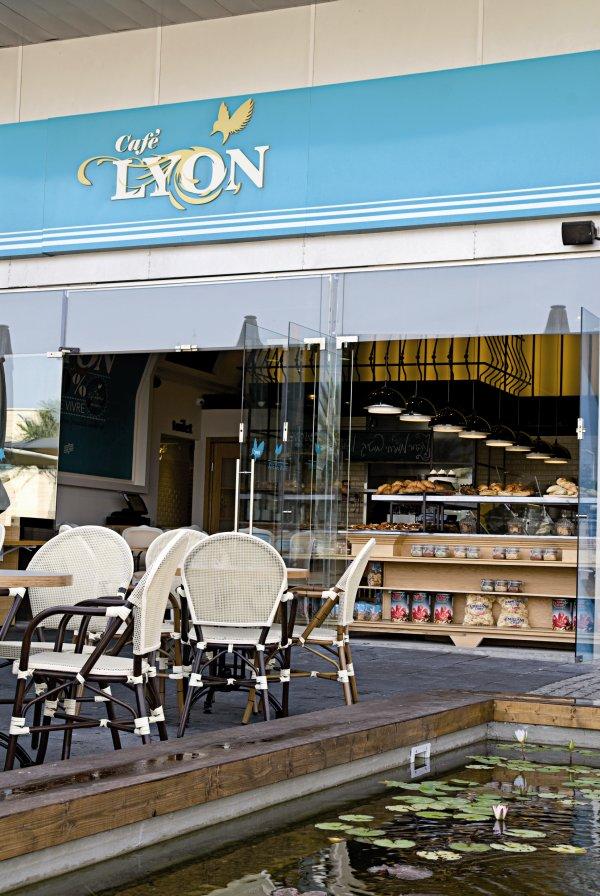 תמונה של lyon - 4