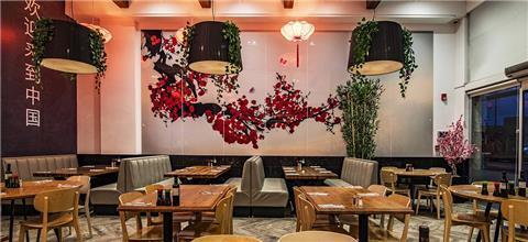 סין צאן - מסעדה אסייאתית בדרום