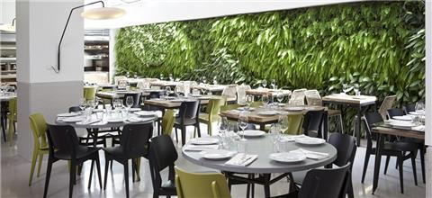 משיה - מסעדת קונספט בתל אביב