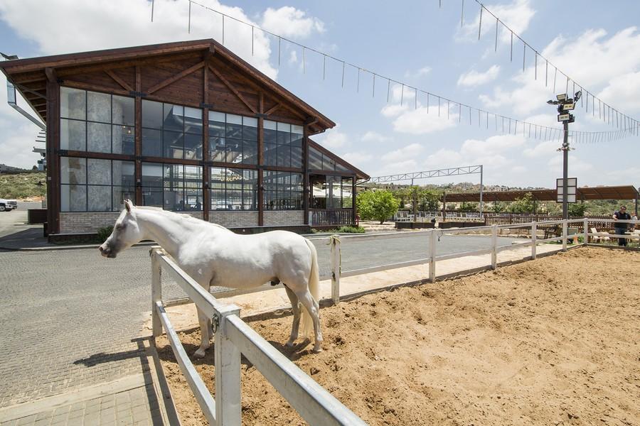 תמונה של חוות אלבואדי מסעדת אג'אויד - 3