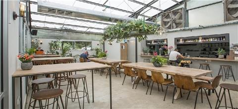 קפה חממת הסחלבים - בית קפה במעלה החמישה