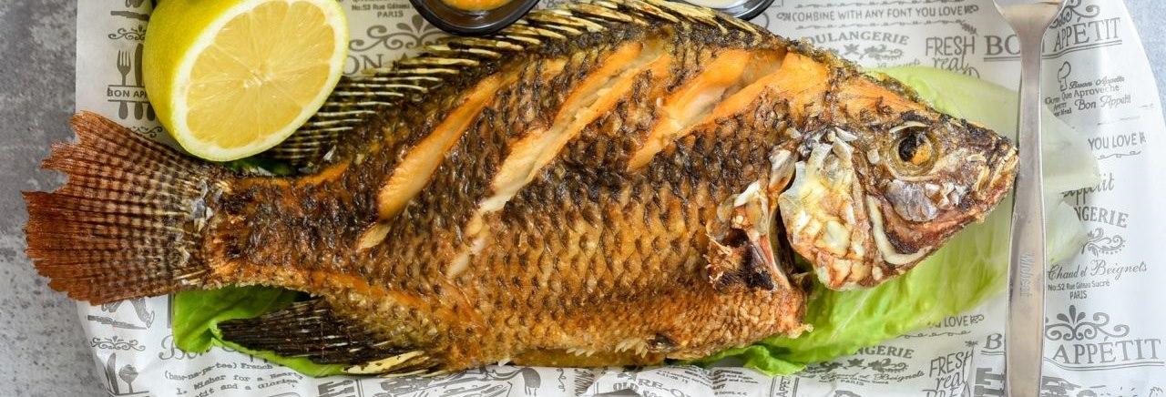 תמונת רקע מסעדת דגי הקיבוצים