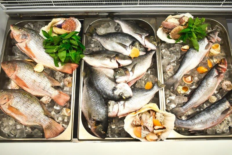 דגים טריים מסעדת המשביע