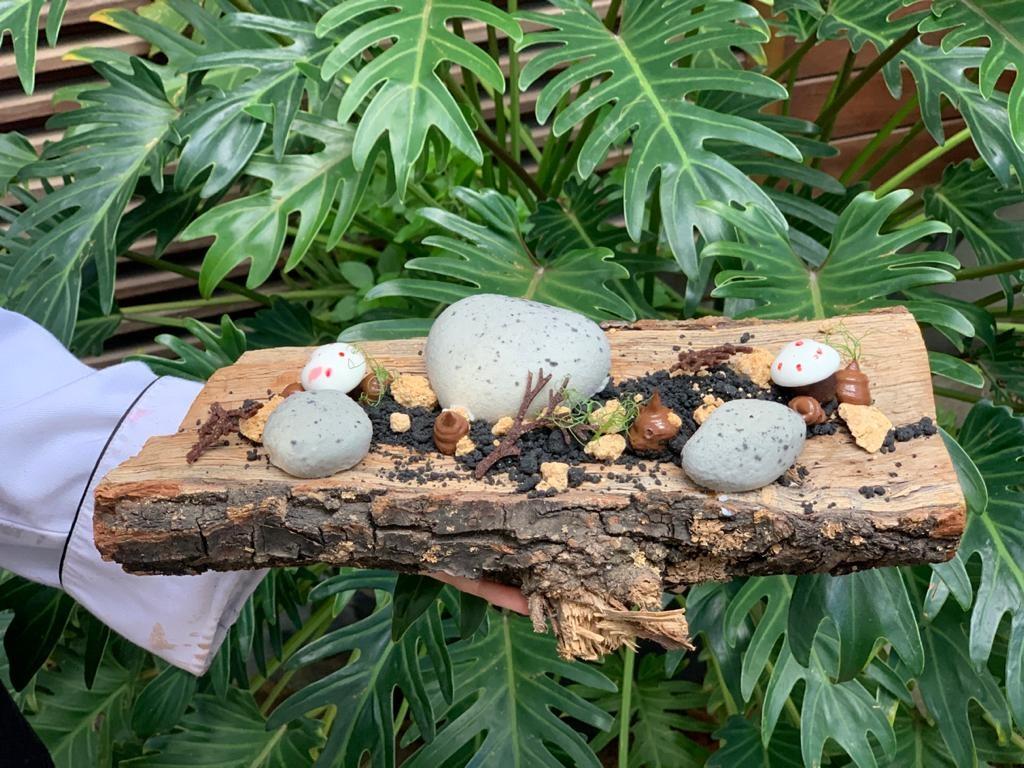 היער השחור נינה סטייל (צילום: טלי יחזקאלי)