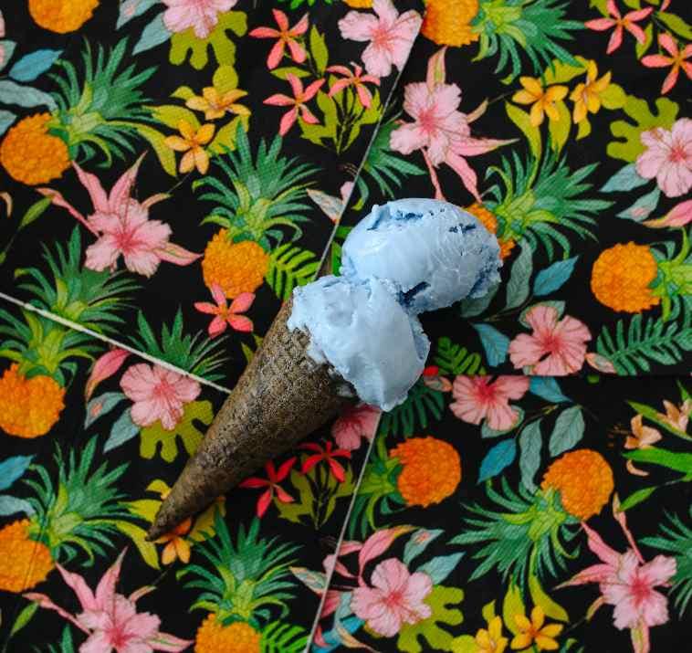 גלידת ספירולינה ברשת אליס (צילום: ביאנה ויטקין)