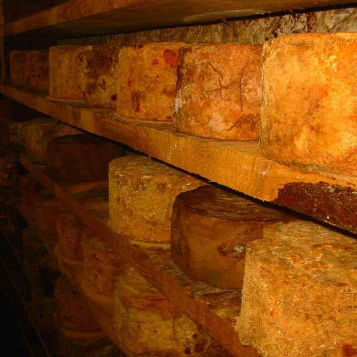 גבינות של Giolito formaggi (צילום: מתוך עמוד הפייסבוק של המקום)
