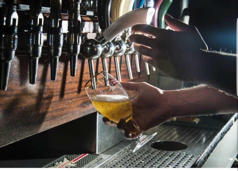 בירה בטמפל בר (צילום: באדיבות המקום)