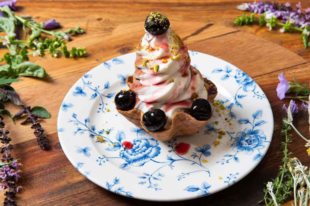 גלידה במסעדת ברבהר (צלם: דרור ורשבסקי)