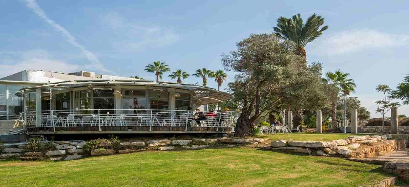 מסעדת ארצי במוזיאון תל אביב (צילום: באדיבות המקום)