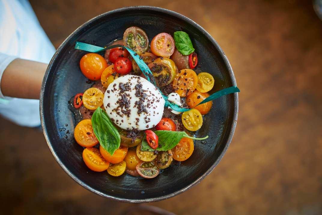 סלט עגבניות עם בורטה של השף יונתן רושפלד (צילום: אליאב גולדנברג)