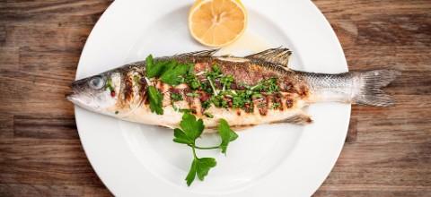אורי בורי - מסעדת דגים בצפון